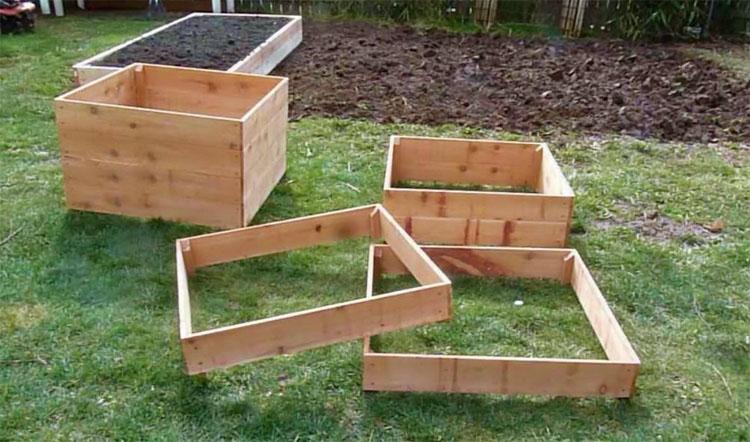 Картошка растет в ящике: с каждого куста соберем по ведру